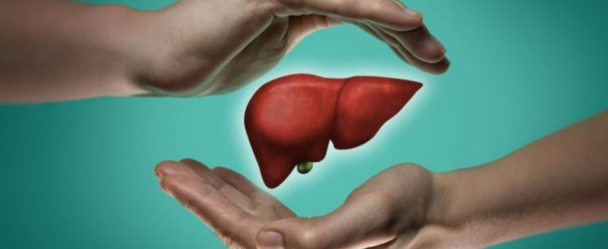 Podcast 40. Una función del hígado domina tu estrés y tu salud